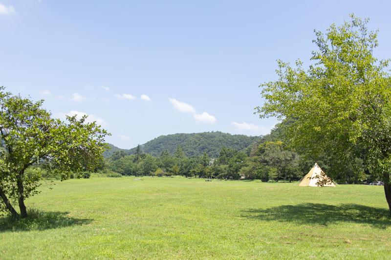 桃太郎公園キャンプ場(栗栖園地)はフリーサイト
