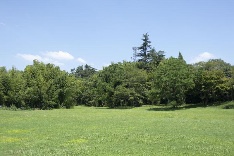 桃太郎キャンプ場の奥側