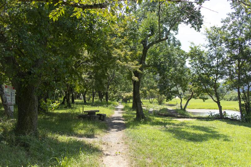桃太郎公園キャンプ場は日陰が少ない